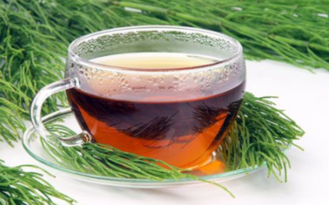 equiseto per il tè dimagrante